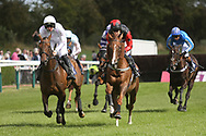 The race to the finishing post after jumping the last fence during Uttoxeter Races at Uttoxeter Racecourse, Uttoxeter, United Kingdom on 30 July 2017. Photo by John Potts.