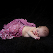 A studio portrait of a newborn baby girl. Photo Tim Clayton
