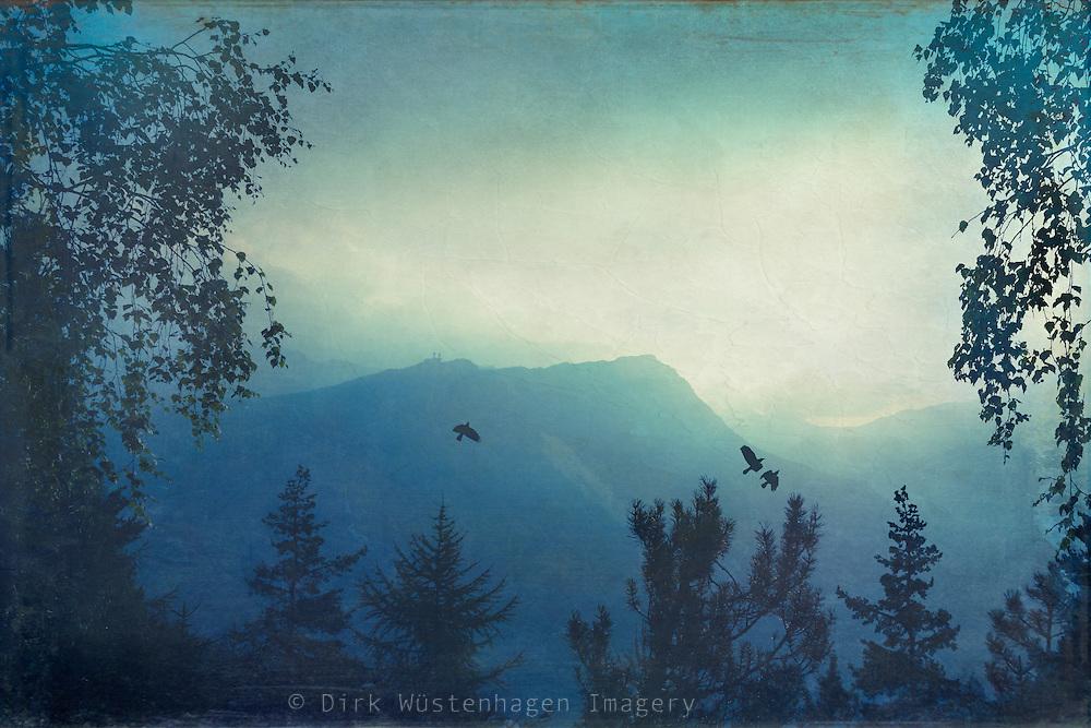 Rising sun on a summer morning in the Italian Alps near Chiesa in Valmalenco/ Lombardia / Italy