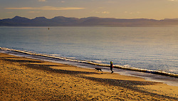 A woman walks her dog along the beach at Ͳ<br /> <br /> (c) Andrew Wilson   Edinburgh Elite media