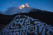 Sunset on Ama Dablam (6848m), as seen from Dingboche, Khumbu (Everest) region, Sagarmatha National Park, Himalaya Mountains, Nepal.