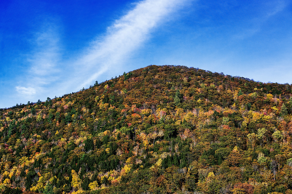 Colorful autumn trees on a mountainside, Vermont, USA