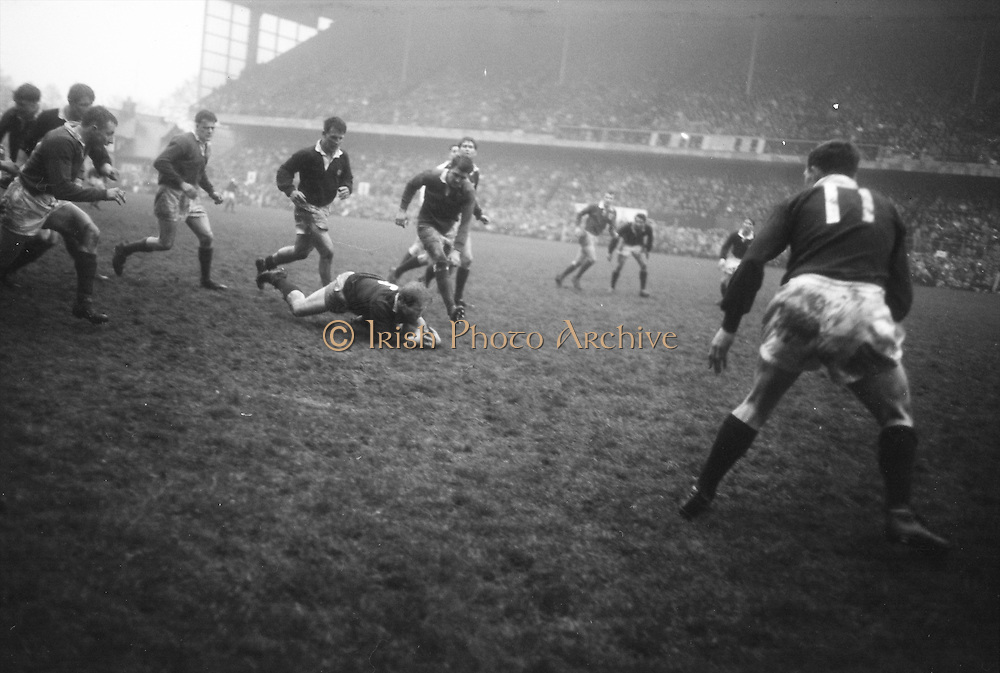NS Bruce, Scottish forward, smothers this ball, following an Irish foot rush with Irishmen Mulcahy, left, and Murphy, right, following up fast, and Scotlands DM Rollo covering off,..Irish Rugby Football Union, Ireland v Scotland, Five Nations, Landsdowne Road, Dublin, Ireland, Saturday 22nd February, 1964,.22.2.1964, 22.2.1964,..Referee- A C Luff, Rugby Football Union, ..Score- Ireland 3 - 6 Scotland, ..Irish Team, ..T J Kiernan,  Wearing number 15 Irish jersey, Full Back, Cork Constitution Rugby Football Club, Cork, Ireland,..P J Casey, Wearing number 14 Irish jersey, Right Wing, University College Dublin Rugby Football Club, Dublin, Ireland, ..M K Flynn, Wearing number 13 Irish jersey, Right Centre, Wanderers Rugby Football Club, Dublin, Ireland, ..J C Walsh,  Wearing number 12 Irish jersey, Left Centre, University college Cork Football Club, Cork, Ireland,..K J Houston, Wearing number 11 Irish jersey, Left Wing, Queens University Rugby Football Club, Belfast, Northern Ireland,..C M H Gibson, Wearing number 10 Irish jersey, Stand Off, Cambridge University Rugby Football Club, Cambridge, England, and, N.I.F.C, Rugby Football Club, Belfast, Northern Ireland, ..J C Kelly, Wearing number 9 Irish jersey, Scrum Half, University College Dublin Rugby Football Club, Dublin, Ireland,..P J Dwyer, Wearing number 1 Irish jersey, Forward, University College Dublin Rugby Football Club, Dublin, Ireland, ..A R Dawson, Wearing number 2 Irish jersey, Forward, Wanderers Rugby Football Club, Dublin, Ireland, ..R J McLoughlin, Wearing number 3 Irish jersey, Forward, Gosforth Rugby Football Club, Newcastle, England, ..W A Mulcahy, Wearing number 4 Irish jersey, Captain of the Irish team, Forward, Bective Rangers Rugby Football Club, Dublin, Ireland,  ..W J McBride, Wearing number 5 Irish jersey, Forward, Ballymena Rugby Football Club, Antrim, Northern Ireland,..E P McGuire, Wearing number 6 Irish jersey, Forward, University college Galway Football Club, Galway, Ireland,  ..M G Culliton,
