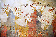 """Minoan Fresco wall painting of """" Spring """"  from Minoan Bronze Age settlement  of Akrotiri on the Greek island of Thira, Santorini, Greece.  Athens Archaeological Museum. .<br /> <br /> If you prefer to buy from our ALAMY PHOTO LIBRARY  Collection visit : https://www.alamy.com/portfolio/paul-williams-funkystock/minoan-art-artefacts.html . Type -   Athens    - into the LOWER SEARCH WITHIN GALLERY box. Refine search by adding background colour, place, museum etc<br /> <br /> Visit our MINOAN ART PHOTO COLLECTIONS for more photos to download  as wall art prints https://funkystock.photoshelter.com/gallery-collection/Ancient-Minoans-Art-Artefacts-Antiquities-Historic-Places-Pictures-Images-of/C0000ricT2SU_M9w"""