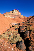 Volcanic boulders and sagebrush under The Castle, Waterpocket Fold, Capitol Reef National Park, Utah USA