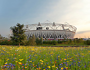 The 80.000 seater Olympic Stadium in Stratford East London is the centre piece of the Olympic Park. The 2012 summer Olympics will be held here from the 27th of July. The landscaping and the sea of wild flowers is quit amazing.<br /> <br /> Architect: Peter Cook, Populous