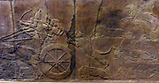 royal lion hunt Assyrian, from the palace of Nineveh, 645-635 BC