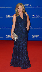 New anchor Laura Ingraham arrives for the White House Correspondents' Association (WHCA) dinner in Washington, D.C., on Saturday, April 29, 2017 (Photo by Riccardo Savi)  *** Please Use Credit from Credit Field ***