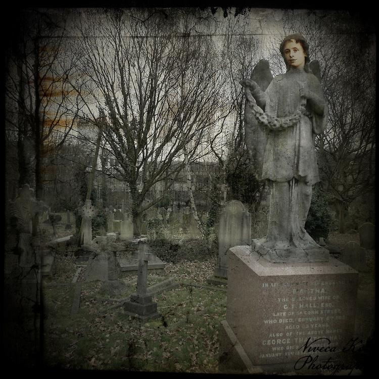Stone angel memorial in a graveyard