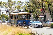 Laguna Beach Blue Trolley Driving Through Downtown Laguna