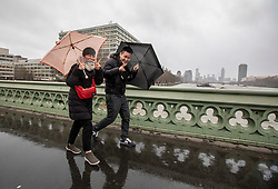© Licensed to London News Pictures. 14/01/2020. London, UK. Tourists brave the wind and rain on Westminster Bridge as London braces for more wind and heavy rain during this evening's rush hour. While another storm heads to the South East behind Storm Brendan. Photo credit: Alex Lentati/LNP