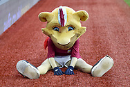 Aston Villa mascot Bella the Lion takes a rest during the The FA Cup 3rd round match between Aston Villa and Swansea City at Villa Park, Birmingham, England on 5 January 2019.