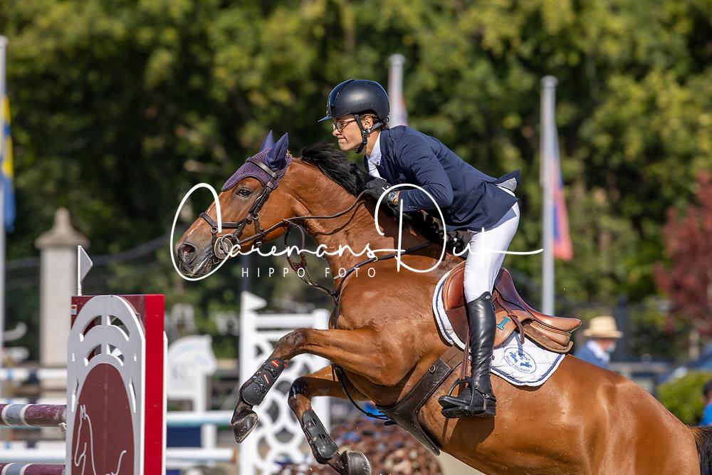 Belgian Championship 6 years old horses<br /> SenTower Park - Opglabbeek 2020<br /> © Hippo Foto - Dirk Caremans<br />  13/09/2020