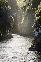 The steep sided Storms River Gorge, Tsitsikamma Marine Protected Area, Garden Route National Park, Eastern Cape, South Africa,