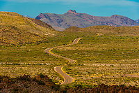 Windy road on Ross Maxwell Scenic Drive in Big Bend National Park, Texas USA.