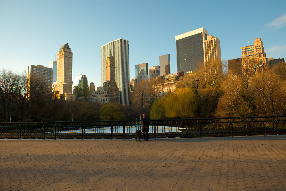 New York City, United States - Skyline of midtown Manhattan from Central Park.