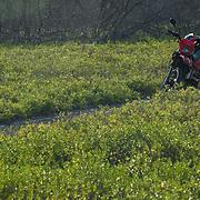 Motorcycle on dirt road. Isla Mujeres, Quintana Roo. Mexico.