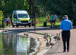 © Licensed to London News Pictures. 20/05/2020. London, UK. Police patrol the park while members of the public relax in the sunshine in Hyde Park as weather experts predict the warmest day of the Year with a high of 27c. Last week the Government eased the law on lockdown to let people spend more time outside to enjoy sunbathing and picnicking. Photo credit: Alex Lentati/LNP