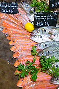 Raw fish sea bass and rouget de ligne ( Mullett) - on display for sale in food market at St Martin de Re, Ile de Re, France
