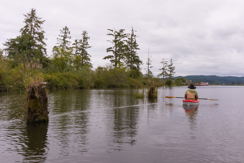 Kayaking on Blind Slough, the Lewis and Clark National Wildlife Refuge, Columbia River, Oregon, Oregon Coast