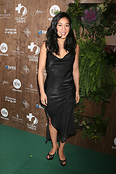 February 20, 2019 - Beverly Hills, CA, USA - LOS ANGELES - FEB 20:  Michelle Kwan at the Global Green 2019 Pre-Oscar Gala at the Four Seasons Hotel on February 20, 2019 in Beverly Hills, CA (Credit Image: © Kay Blake/ZUMA Wire)
