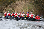 Crew: 219   W U23 8+ U23   Birmingham, University of, Boat Club   UBI-CHATFIELD<br /> <br /> Wallingford Head 2017<br /> <br /> To purchase this photo, or to see pricing information for Prints and Downloads, click the blue 'Add to Cart' button at the top-right of the page.