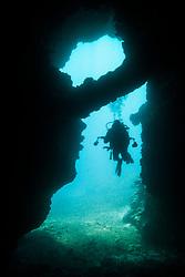 scuba diver exploring First Cathedral, Lanai, Hawaii, USA, Pacific Ocean, MR