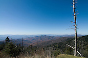 Nature of Great Smokey mountains Nationalpark. Tennessee. United States of America.