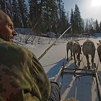 North of the Arctic Circle in Russia, Piotr Terentév, a nomadic Komi reindeer herder, drives his team along a dangerous melting stream in search of fishing holes.