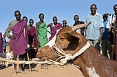 Food security in Turkana, Kenya