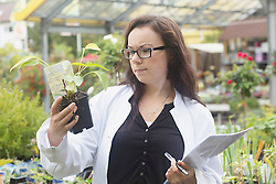 Female scientist inspecting plant at greenhouse, Freiburg im Breisgau, Baden-Wuerttemberg, Germany