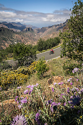 Woman cycling on mountain road