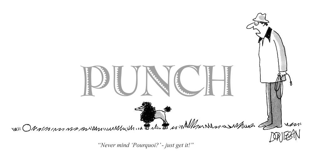 """Never mind 'Pourquoi?' - just get it!"""