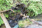 China, Yangshuo town rice paddies primitive irrigation system