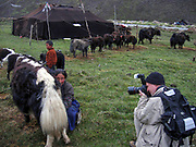 Peter Menzel, photojournalist and co-author of the book What I Eat: Around the World in 80 Diets, photographs nomadic herder Karsal's wife while she milks a cow at home in the Tibetan plateau.
