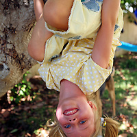 Young girl with ponytails hangs upside-down from tree on a sunny summer day.