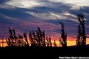 Photo documentaire Patagonie Photo Documentary /   /  / Argentina / 2008-12-16, Photo © Marc Gibert / adecom.ca