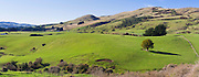 A panoramic view of The Catlins farming country, Southland, New Zealand, on a bright, blue winter morning