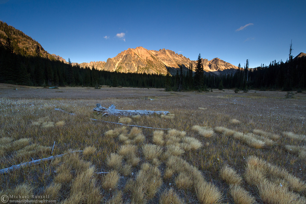 Photo of Sunset light on Kangaroo Ridge at Washington Pass with some Narrow Leaved Cotton Grass (Eriophorum angustifolium) in the foreground - in the North Cascades of the Okanogan-Wenatchee National Forest in Washington State, USA.
