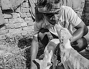 A  Varanasi for Animals worker receives a kiss from one of the rescued street dogs.