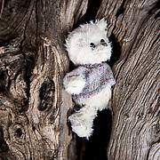A teddybear  at Moria camp, Lesvos, Greece.
