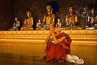 Buddhist monk at the Shwedagon Pagoda, Yangon (Rangoon), Myanmar (Burma)