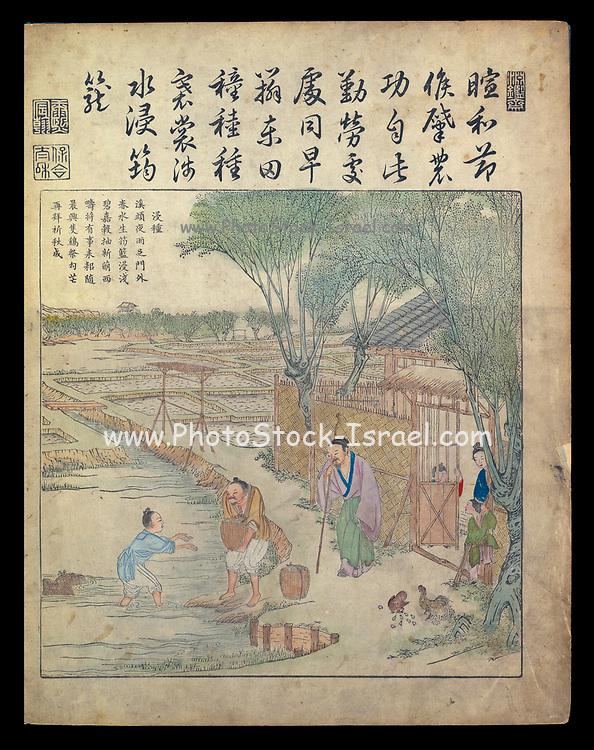 Ancient 17th century Chinese art Rice farming in a paddy From Yu zhi geng zhi tu by Jiao, Bingzhen, 1696