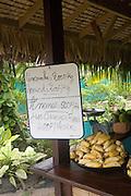 Roadside fruit, vegetable and flower market, Moorea, French Polynesia