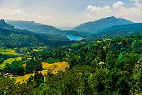 Ramboda, Central Province, Sri Lanka.