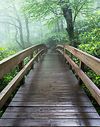 """Rough Ridge Trail Bridge<br /> <br /> 11"""" x 14""""<br /> See Pricing page for details. <br /> <br /> Please contact me for custom sizes and print options including canvas wraps, metal prints, assorted paper options, etc. <br /> <br /> I enjoy working with buyers to help them with all their home and commercial wall art needs."""