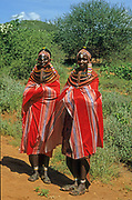 Young women of the Samburu tribe. The Samburu are a Nilotic people of north-central Kenya. Samburu are semi-nomadic pastoralists who herd mainly cattle but also keep sheep, goats and camels.