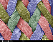 A scanning electron microscope (SEM) image of fastskin swimsuit fabric.  This fabric simulates the water flow found on the skin of sharks.  Using natural materials for insperation has lead to these modern fabrics.  This fabric allows swimmers to decrease fluid resistance and had lead swimmers to record times..The reference bar is 100 um wide and was imaged at 131x magnification.