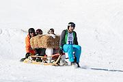 Nöldi Forrer, Alina Buchschacher, Stefan Regez und André Roger Weiss beim Hornschlittenrennen. Renzo's Schneeplausch vom 23. Januar 2016 in Vella, Gemeinde Lumnezia.