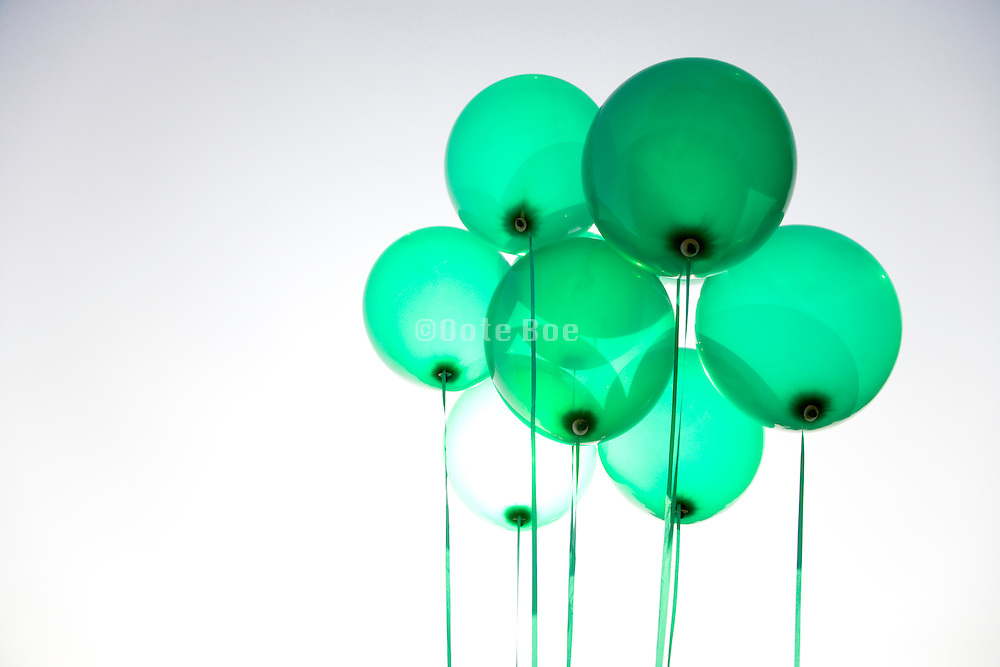 group of green helium filled balloons